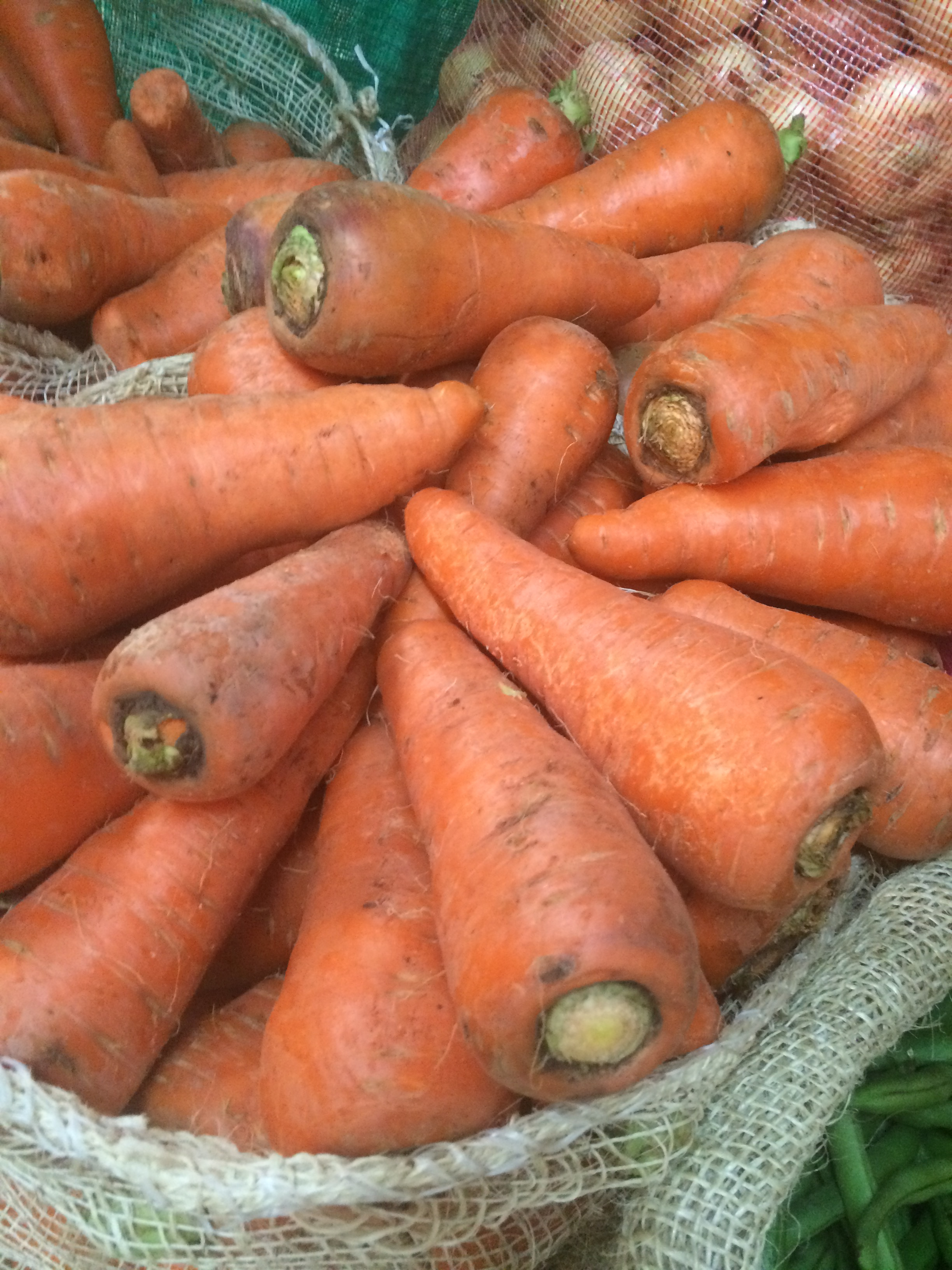 Big-ass carrots, for you foodies!